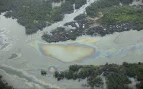 Delta del Niger inquinamento petrolo