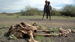 Secondo l'Onu oltre 10 milioni di persone rischiano la fame